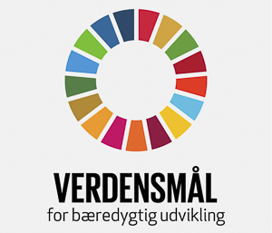 Vugge til Vugge er med i Advisory Board for SDG-Accelerator under UNDP
