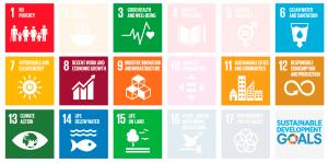 Cradle to Cradle Certified dokumenterer arbejdet inden for 11 FN verdensmål for bæredygtig udvikling